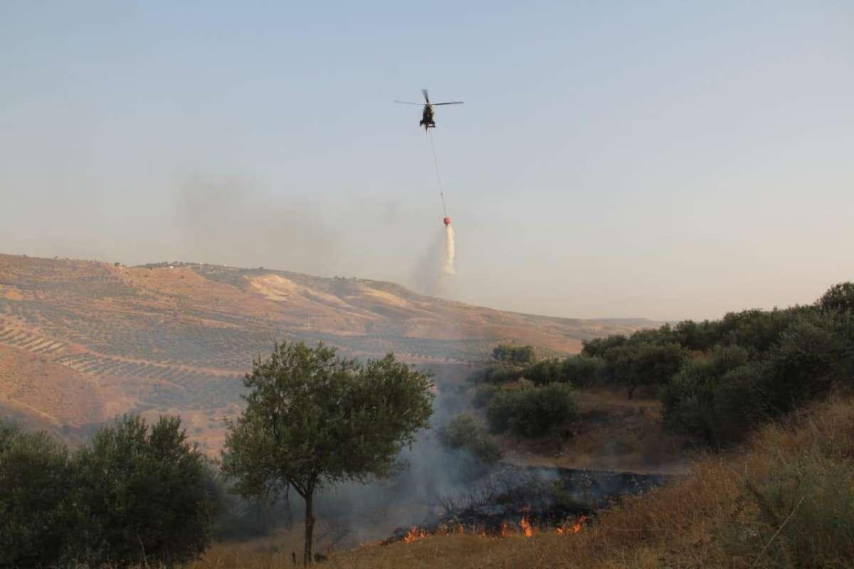 الدفاع المدني يخمد حريقاً لأعشاب جافة وأشجار حرجية وقصيب في محافظة إربد